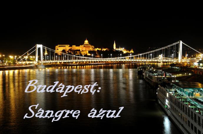 Budapest Puente de Elisabeth
